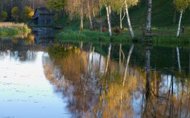 Stuga och skog som speglar sig i sjön. Foto: Jan Töve