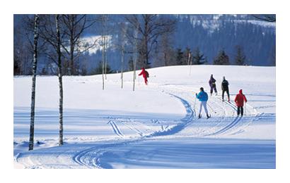 ulricehamn skidor
