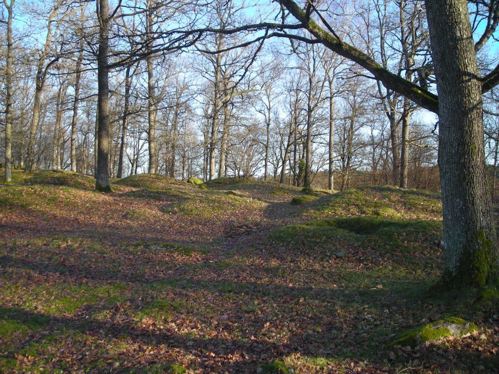 Kummeliberg gravfält. Foto: Lisa Mårtensson