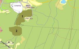 Utmarkerade områden på en karta om vart det ska avverkas.