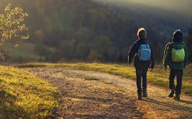 Två pojkar går på en landsväg med ryggsäckar