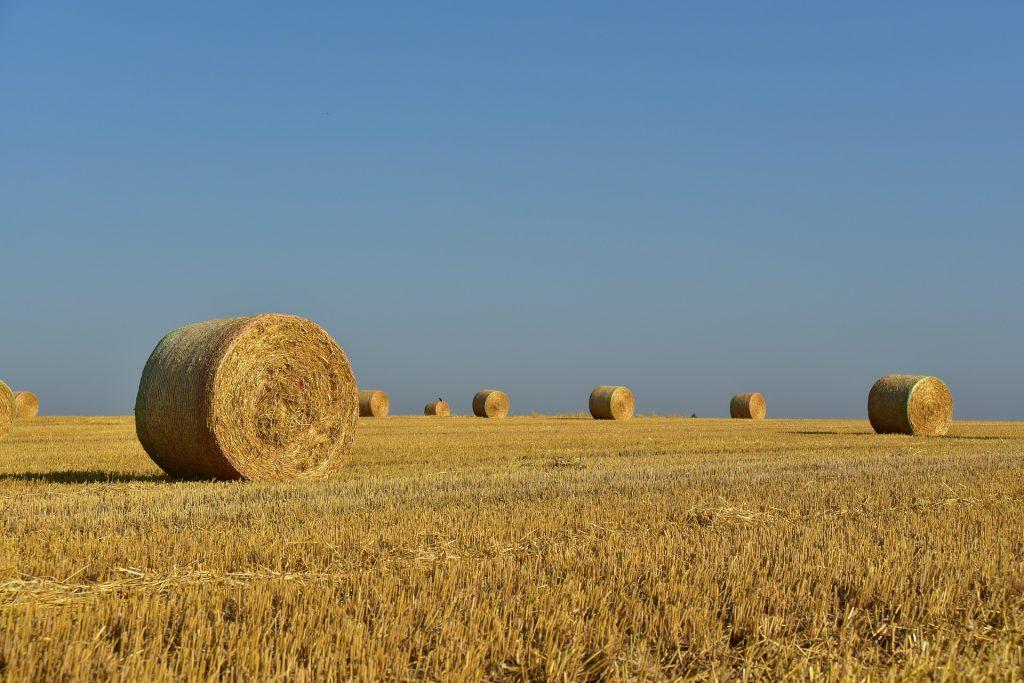 Jordbruksmark med ett par höbalar. Foto: Pixabay