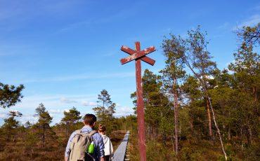 En vandringsled på Komosse naturreservat